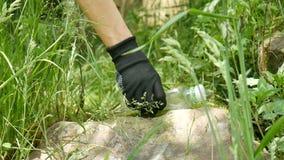 Het wijfje dient zwarte handschoenen in opneemt plastic waterfles van groen gras in het bos of het park Sparen milieu en stock videobeelden