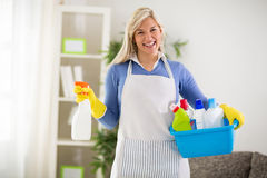 Het wijfje draagt schoonmakende producten in plastic waskom stock fotografie