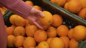 Het wijfje plukt sinaasappelen in de supermarkt met de hand stock video
