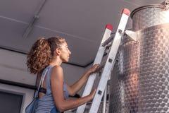 Het wijfje winemaker controleert de kwaliteit van wijn Royalty-vrije Stock Fotografie