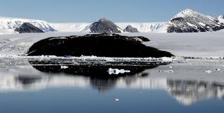 Het wijzen van op Antarctica Stock Foto's