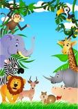 Het wild Afrika Royalty-vrije Stock Afbeeldingen