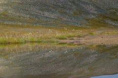 Het wild Altai De rivier, de bergen en de hemel met wolken in samenvatting Royalty-vrije Stock Afbeelding