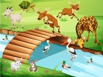 Het wild in een Mooie Aard vector illustratie