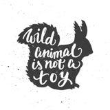 Het wilde dier is niet stuk speelgoed het van letters voorzien in eekhoorn Stock Afbeeldingen