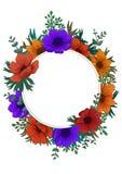 Het wilde kader van de bloemencirkel De digitale illustratie van het kleurenpotlood Verticaal Ontwerp met mooie anemonen en exemp Royalty-vrije Stock Fotografie
