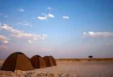 Het wilde kamperen van tenten Royalty-vrije Stock Afbeelding