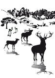 Het wildillustratie van hooglanden Royalty-vrije Stock Fotografie