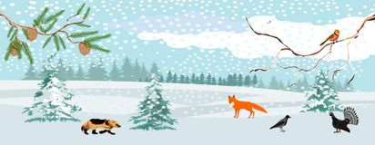 Het wildlandschap, de winter in de bos, vectorillustratie stock illustratie