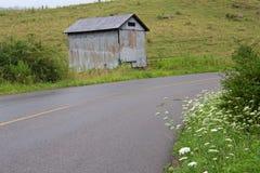 Het winden, landweg met madeliefjes royalty-vrije stock foto