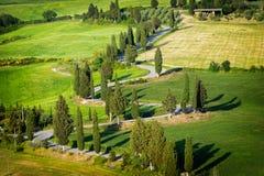 Het winden van cipres gevoerde weg van Monticchiello stock afbeeldingen