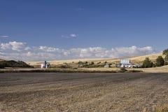 Het winden van landelijke weg in Palouse-Land in zuidoostelijk Washington State stock fotografie