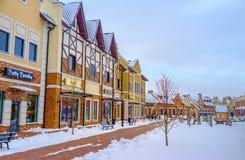Het winkelen in de winter Stock Foto's