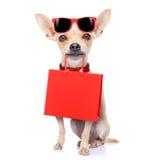Het winkelen hond Stock Afbeeldingen