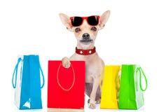 Het winkelen hond Royalty-vrije Stock Afbeelding