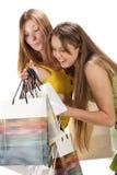 Het winkelen. Mooi meisje twee met zak Royalty-vrije Stock Afbeelding