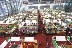 Het winkelen van de winter festival Stock Fotografie