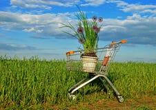 Het winkelen van Eco Stock Fotografie