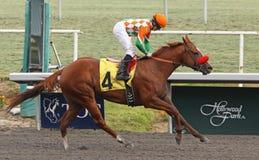 Het winnen van Haar Eerste Race Royalty-vrije Stock Afbeeldingen