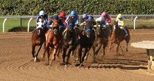Het winnen van Zijn Eerste Race Stock Fotografie