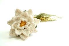 Het wit knited bloem Royalty-vrije Stock Foto's