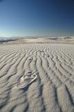 Het witte Af:drukken van de Voet van het Zand Stock Fotografie