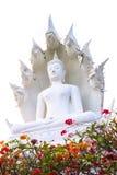 Het witte die standbeeld van Boedha op witte achtergrond wordt geïsoleerd Stock Foto's