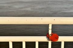Het witte geschilderde traliewerk van de dijk van de rivier Met een rood slot in de vorm van een hart royalty-vrije stock foto's