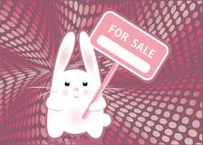 Het witte grappige teken van de konijnholding VOOR VERKOOP Royalty-vrije Stock Foto's