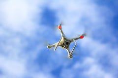 Het witte hommel vliegen Royalty-vrije Stock Foto