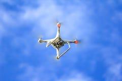Het witte hommel vliegen Royalty-vrije Stock Fotografie