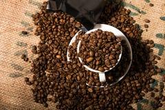 Het witte hoogtepunt van de koffiekop van bonen, rand door meer koffiebonen Royalty-vrije Stock Fotografie