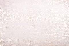 Het witte houten oppervlaktecraqueleren. stock fotografie