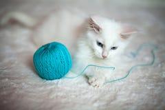 Het witte katje spelen met een bal van garen Royalty-vrije Stock Fotografie