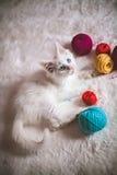 Het witte katje spelen met gekleurde ballen van garen Royalty-vrije Stock Afbeelding