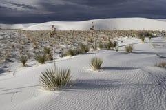 Het witte Nationale Monument van het Zand Royalty-vrije Stock Foto's
