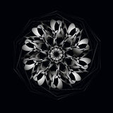 Het witte ornament van het cirkelkant Vectorillustratie, sierachtergrond Royalty-vrije Stock Afbeelding