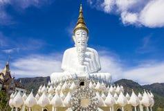 Het witte standbeeld van vijf Lord Buddha Royalty-vrije Stock Foto's