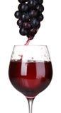 Het witte wijn gieten in glas en druiven royalty-vrije stock afbeelding