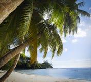 Het witte zand van het koraalstrand en azuurblauwe Indische Oceaan. Stock Foto's