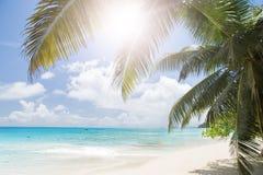 Het witte zand van het koraalstrand en azuurblauwe oceaan. De eilanden van Seychellen. Stock Foto's