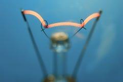 Het wolfram van de verlichting Stock Afbeelding