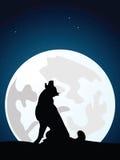Het wolfsgehuil op de volle maan Royalty-vrije Stock Foto
