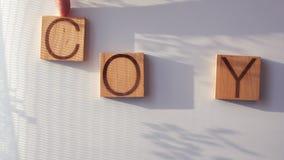 Het woord` EXEMPLAAR ` wordt opgemaakt in houten brieven stock videobeelden