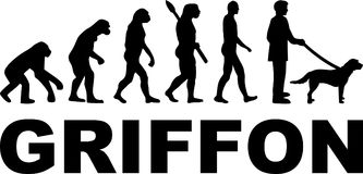 Het woord van de Griffonevolutie Royalty-vrije Stock Afbeeldingen
