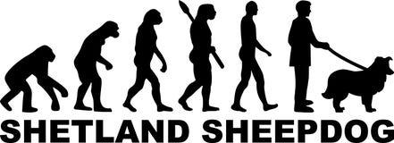 Het woord van de de Herdershondevolutie van Shetland vector illustratie