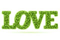 Het woord van de liefde in groene bladeren Stock Afbeelding