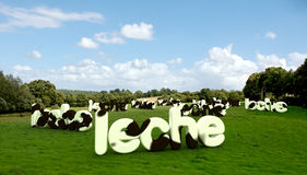 Het woord van de melk in Spaanse ?leche? met zweeptextuur Royalty-vrije Stock Afbeelding