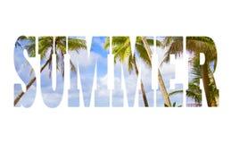 Het woord van de zomer op palmen over hemel en overzeese achtergrond Stock Foto