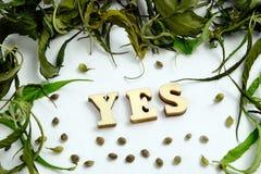Het woord wordt JA opgemaakt van houten brieven in het centrum van het kader van de droge bladeren van marihuana en de korrels va royalty-vrije stock afbeeldingen